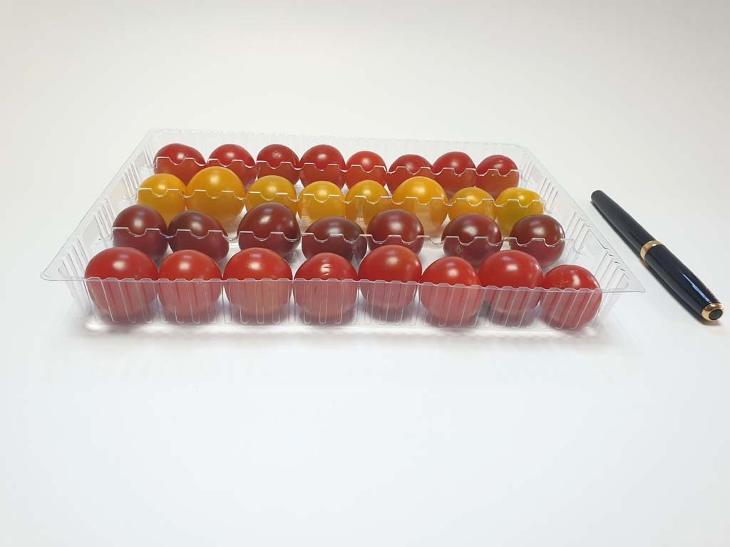 4105 - fructe si legume (1)